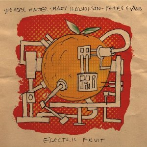 electricfruit